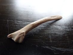 L'Os de Lapin